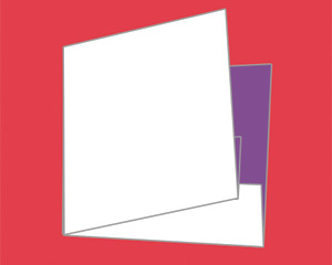 Fold 6