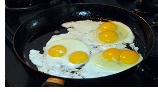 six yolks