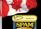 CASL/Spam: Action List for Business